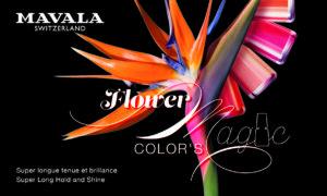 Flower Magic Color's